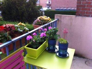 Beau balcon aménagé avec nos poteries