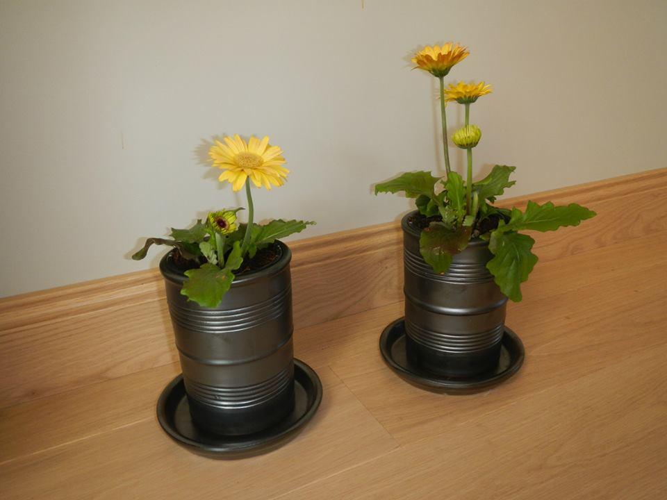 Nos poteries Boîtes de Conserve en situation