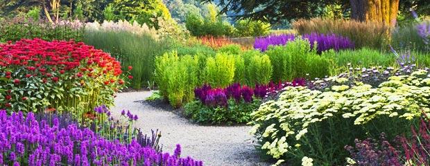 Conseils du mois de mai au jardin de lore les poteries d for Au jardin conseil